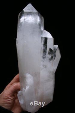 5.7Ib 10.6 Natural Clear Lemurian Seed Quartz Cluster Crystal Point Specimen