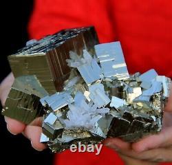 5 Museum Mirror Shining Golden Pyrite Cluster withQuartz, Huanzala, Peru! PY158