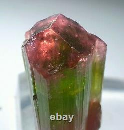 50 Gram Top Quality ST Gemmy Multicolors Twin Bunch Type Tourmaline Crystal