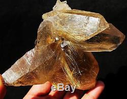 523.4g New Find NATURAL Clear Golden RUTILATED QUARTZ Crystal Cluster Specimen
