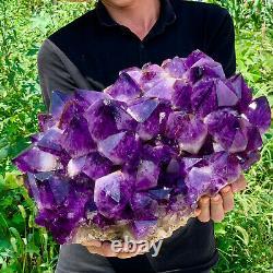 53.55LB Natural Amethyst geode quartz cluster crystal specimen Healing SSG1013