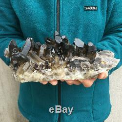 6.1LB Natural Large Smoky Quartz Cluster Healing Crystal Point Mineral Specimen
