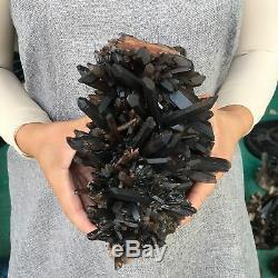 6.2LB Natural smokey quartz cluster crystal specimen healing E8366