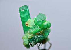6.40 Ct. Full Terminated Transparent Panjsher Emerald Crystals Bunch @Afg