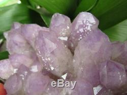 6.52lb NATURAL Amethyst quartz crystal cluster Point Specimens