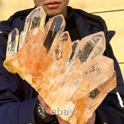 6.64LB Clear Natural Beautiful White QUARTZ Crystal Cluster Specimen 25