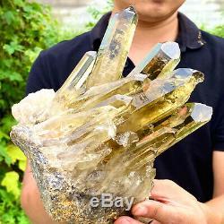 6.6LB Natural Citrine cluster mineral specimen quartz crystal healing F289