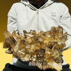 6100g Large Natural Smoky Citrine Quartz Crystal Cluster Rough Healing Specimen