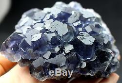 650.2g NATURAL Blue FLUORITE Quartz Crystal Cluster Mineral Specimen