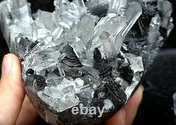 657g Natural Clear Crystal Cluster &Flower Shape Specularite Mineral Specimen