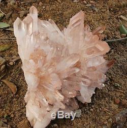 66.88lb AA++ Huge Nice Clear Natural Pink QUARTZ Crystal Cluster Specimen Rare