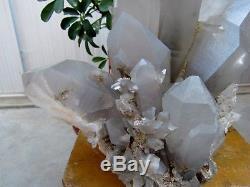 68.28lb RARE HUGE NATURAL Clear Quartz Crystal cluster Points Specimens
