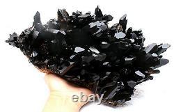 7.61lb Rare Natural Black QUARTZ Crystal Cluster Mineral Specimen