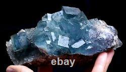 736g New Find Transparent Blue Cube Fluorite Crystal Cluster Mineral Specimen