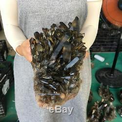8.27LB Natural smokey quartz cluster crystal specimen healing E8359