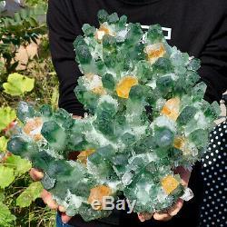 8.98LB New Find Green Phantom Quartz Crystal Cluster Mineral Specimen Healing