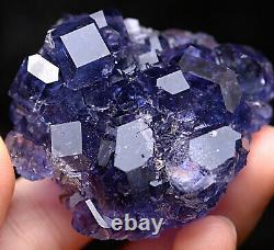 84.6g Natural Blue FLUORITE Quartz Crystal Cluster Mineral Specimen