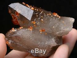 87.6g NATURAL Smoky Quartz Garnet Crystal Cluster Mineral Specimen
