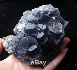 884.6g NATURAL Blue FLUORITE Quartz Crystal Cluster Mineral Specimen