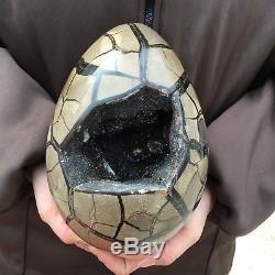 9.37LB Natural dragon septarian cluster geode quartz crystal egg healing SQ5