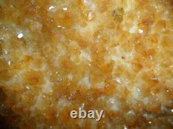 9 Natural Large Citrine Geode Quartz Gemstone Cluster on a Wooden Base