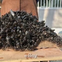 91LB Natural black Quartz Cluster Mineral vug Crystal Healing 31.4 TT521