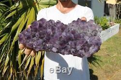 Amethyst Quartz Cluster Large Crystals specimen healing FREE Ship