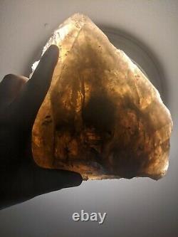 Big 8.2lb Elestial Smokey Quartz Crystal Cluster Large Specimen Citrine Wow