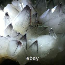 Blue Skin White Dog Tooth Fluorescent Calcite Crystal Cluster Mineral Specimen