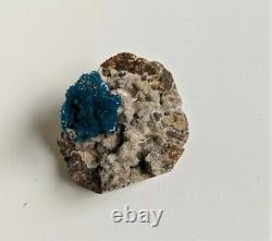 Cavansite Crystal Clusters on matrix RARE (55x45mm) ET