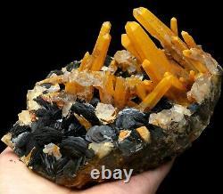 Citrine Crystal Cluster & Flower Shape Specularite Mineral Specimen/China Y00921
