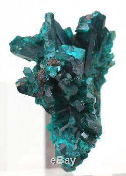 DIOPTASE Crystal Cluster Emerald Green Mineral Specimen KAZAKHSTAN Gemstone