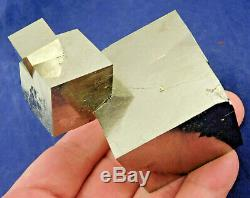 FOUR! 100% Natural Entwined PYRITE Crystal Cubes! In a HUGE Cluster Spain 464gr