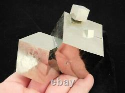 FOUR! Entwined Pyrite Crystal CUBES in a HUGE Cluster Spain 575gr