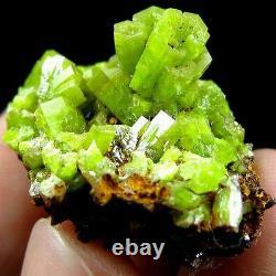 Green Pyromorphite Crystal Cluster Specimen-DZ070