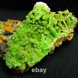 Green Pyromorphite Crystal Cluster Specimen-DZ075