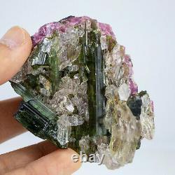 K89 NATURAL Tourmaline Skeletal Crystal Clear Quartz Cluster Specimen RAW Gem