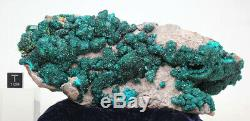LARGE DIOPTASE WULFENITE Crystal Cluster Emerald Green Mineral Specimen CONGO