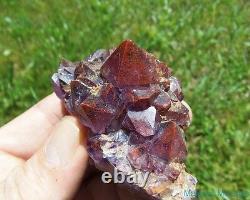 LARGE High End Thunder Bay Amethyst Quartz Crystal Cluster Blue Points Mine