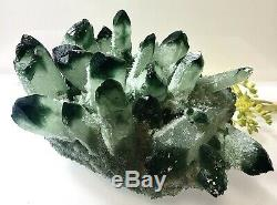 Large Pc 2.355 Lbs Green Phantom Quartz Cluster 6x4.75x3.65 Healing Energy