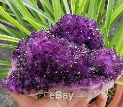 Large Skeletal Deep Purple Amethyst Quartz Crystal Cluster Specimen Point 6.32LB