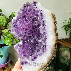 Natural Amethyst Flowers Quartz Crystal Cluster Geode Mineral Specimens Healing