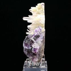 Natural Clear Deep Purple Fluorite Quartz Crysal Cluster Mineral Specimen 396g