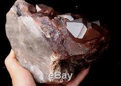 Natural Skeletal Amethyst QUARTZ Crystal Cluster Specimen Healing 6.07lb