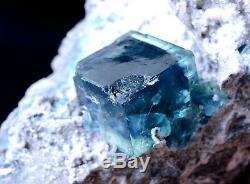 New Find Transparent Blue Cube Fluorite CRYSTAL CLUSTER Mineral Specimen 577g