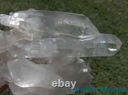 OPTICAL CLEAR HUGE HIGH END PHANTOM DISPLAY DT CLUSTER Arkansas Quartz Crystal