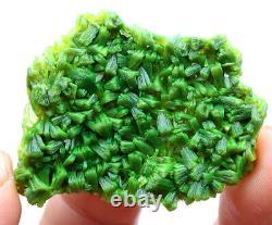 Rare Natural Green Autunite Crystal Cluster Mineral Specimen 16g