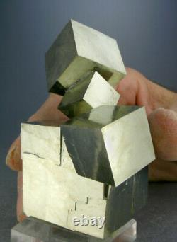 SHINY 6-CUBE GOLDEN PYRITE CRYSTAL CLUSTER FROM SPAIN with VIDEO, GLOBE MINERALS