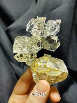 Snake Enhydro Herkimer Diamond Medium Cluster Metaphysical Crystal Must See