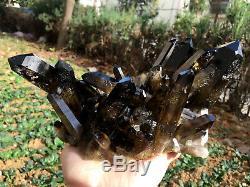 TOP! Natural smoky black quartz cluster crystal specimen healing yellow Quartz